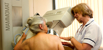 What is a Mammography